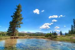 Yosemite 2 (paulkellr) Tags: tuolumnemeadows hdryosemitephotomatixtonemappednaturetreescloudssky