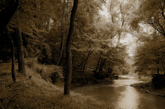 Winding Creek (Sledgeweb) Tags: nature water creek d50 idyllic afsdxvrzoomnikkor1820013556g