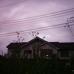 【写真】ミニデジで撮影した空き地越しの邸宅