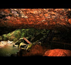 Natural Bridge (whoops vision) Tags: trees nature water stairs creek waterfall rainforest rocks naturalbridge cave goldcoasthinterland springbrooknationalpark specnature aplusphoto numinbahvalley visiongroup bestofaustralia