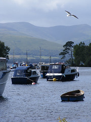 Boats with bird (johnmcgroarty) Tags: park scotland national loch lomond balloch