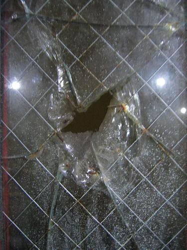 Vandalized wire glass
