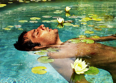 the dreamer (photomontage) (quemas) Tags: flowers miami photomontage loto thedreamer swimingpool quemas summer2008 diegolema upload666