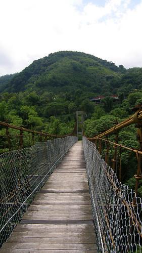 48.斑駁的達邦吊橋