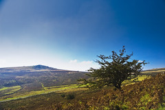 Dartmoor National Park (©Komatoes) Tags: park uk lens nikon kitlens devon national kit dartmoor dartmoornationalpark d40