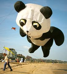 Flying Panda (only lines) Tags: kite beach festival flying kent panda margate