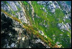 Praderas verticales (santinet) Tags: lighthouse verde faro cabo north cape rocas atlantico hierba acantilados cariño ortegal