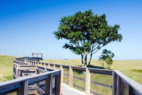 Plum Island Boardwalk  by you.