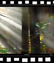 LUZ / ARGIA (Jabi Artaraz) Tags: luz beautiful spain europa europe searchthebest sony bilbao zb bizkaia soe vizcaya bilbo basquecountry 1000views pasvasco argia beautifulearth blueribbonwinner digitalcameraclub 1000vistas euskoflickr totalphoto fineartphotos abigfave superaplus aplusphoto flickrbest impressedbeauy diamondclassphotographer flickrdiamond ysplix theunforgettablepictures excapture elitephotography theperfectphotographer happinessconservancy goldstaraward jartaraz flickrestrellas natureselegantshots argaia alemdagqualityonlyclub llovemypics bderechosdeautorauthorscopyrightbjabiartaraz bestofblinkwinners blinksuperstars