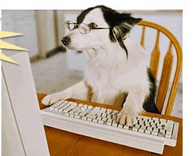frank perro computadora