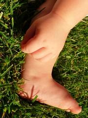 Picking grass (catherinelaceyphoto) Tags: family boy baby love feet girl garden children kid hands toddler child father joy daughter mother son losangelesphotographer