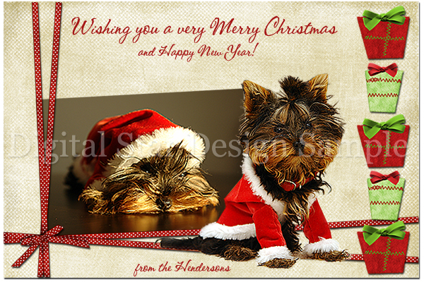 Holiday Card Sample 4, 6x4 (web size)