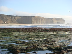 MartinsBeach_2007-067 (Martins Beach, California, United States) Photo