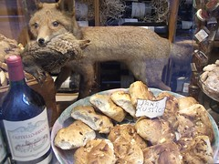 stuffed fox and rustic bread