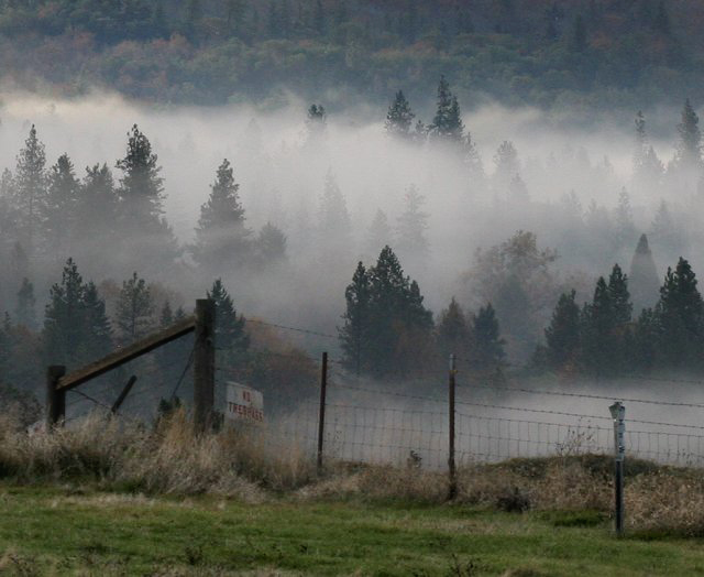 Valley Fog and Fence