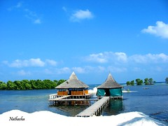 Water bungalow (thayyib (na.tha.sha)) Tags: travel light sky food cloud holiday color green tourism water kitchen bush sand room lagoon type maldives restaurent bungalow bule dhivehi maldivian nathasha raajje thayyib thoyyib thobbu