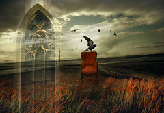 gothic wind (claudiaveja) Tags: autumn light red sky urban black green bird art window nature field grass architecture landscape lite photography fly photo interestingness chair wind surrealism postcard gothic stock manipulation scene images safe concept crow transylvania biserica cluj royaltyfree gotica ogiva rightsmanaged arhitectura explored fotoliu claudiaveja suprarealism exoplore 126029 armchari rightmanaged