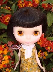 (081-365) Sometimes even Quinn just likes to enjoy pretty stuff.