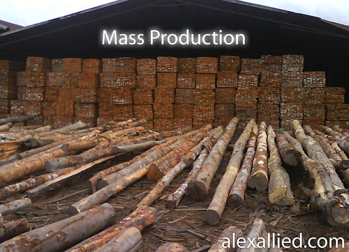 Mass production of sawn timbers from illegal logs