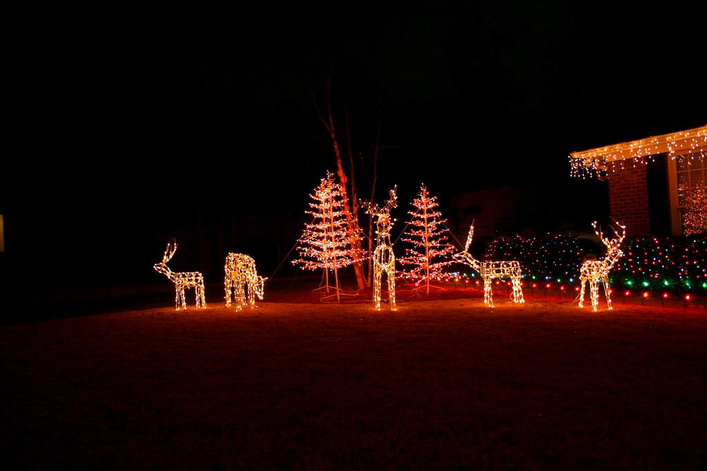 2008 Christmas Lights - Deer Family