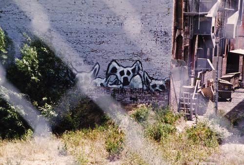 1990s Dog graffiti 11