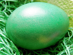 Green egg photo