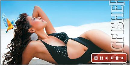 Kingfisher swimsuit special widget - deluxe