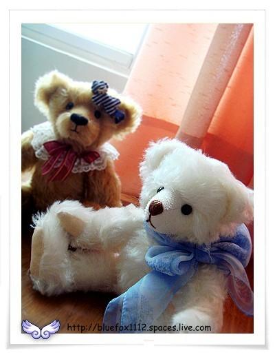 080601泰迪好朋友02_Honey & Puff