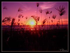 kuta sunset (chimot_cool) Tags: sunset bali beach beautiful indonesia landscape asia moments traveling kuta denpasar abigfave isawyoufirst diamondclassphotographer flickrdiamond earthasia beautifulbali