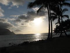 IMG_4308 (aline's photos) Tags: sunset beach hawaii palmtrees kauai aline princeville