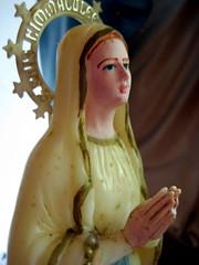 lourdes (parttimefarm) Tags: brasil saints collections chacara echapora