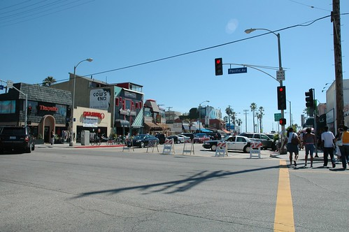 police in venice beach california