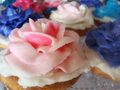 Cupcakes, OP Cafe, Santa Monica