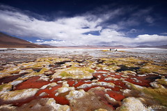The Lost World (LucaPicciau) Tags: world life red rot southamerica nature america landscape lost volcano rojo desert graphic south hell surreal bolivia paisaje lagoon adventure andes inferno ng laguna montaa volcanic rosso colori vulcano altiplano libert uyuni bolivie ande lipez colorada surreale avventura abaroa lucapicciau