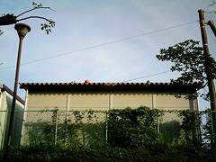【写真】VQ3007で撮影した倉庫の上のボール達