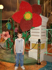 Pat and the giant flower (HurleyFamily) Tags: beantown