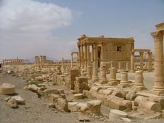 Palmyra (Palmira), Syria (LeszekZadlo) Tags: old heritage archaeology architecture site sand ancient ruins asia desert columns middleeast unesco worldheritagesite arabia syria desierto siria archeologia patrimoniodelahumanidad ph617 5photosaday