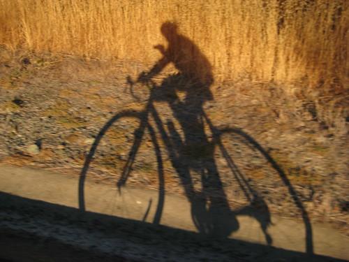Shadow on Bear Creek Rd