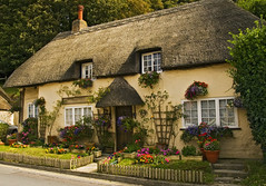 Cottage at West Lulworth, Dorset (Anguskirk) Tags: uk flowers england plants house west building english architecture rural village traditional country cottage eu trellis dorset thatch british archtecture lulworth thebestpicturegallery