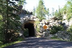 Roadtip USA 08 - Tilbage til naturen