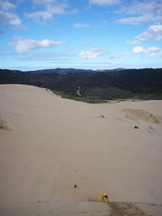 Northland dunes, New Zealand (- MattW -) Tags: newzealand travelling sand sandboarding backpacking sanddunes
