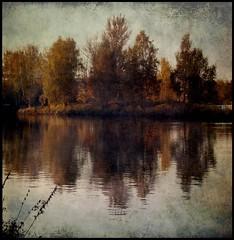 (belle_vue_) Tags: autumn nature automne vintage photo mood graphique multimegashot atqueartificia