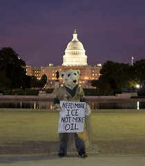 Protester at U.S. Capitol (Rozanne Hakala) Tags: bear usa streetart building mannequin water night america dc washington districtofcolumbia dusk capital greenpeace explore uscapitol congress polar protester senate sculptor globalwarming markjenkins nationscapital freedomstatue