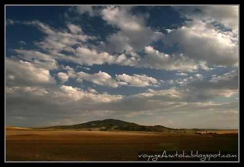 Golden Fields on the Way to Gordium City of King Midas Near Ankara