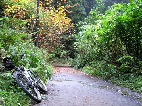 biketrailstart