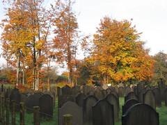 Diemen Noord Veld B Joodse begraafplaats (Arthur-A) Tags: netherlands cemetery nederland jewish diemen begraafplaats joods kerkhof israelitisch