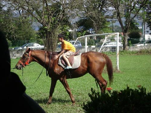 Horse 'racing'