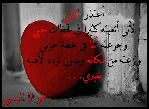 ��� ������ 2012 � ������ ������ 2012 � ��� ������� ������ ������ ������� 2012 3060505495_a5d3e55f3