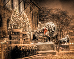 Chicago Art Institute Lions with Christmas Wreath: 4 (spudart) Tags: christmas xmas city winter red usa snow chicago cold building green weather architecture bronze dark evening photo illinois cool downtown pretty december dramatic statues dec wreath photograph bow lions artinstituteofchicago publicart michiganavenue adjectives chicagosnow hdr artinstitute magnificentmile chicagowinter d80 nikond80 edwardkemeys 60603 built1893 maldre artinstitutelions allertonbuilding 111southmichiganavenue artinstitutemainentrance