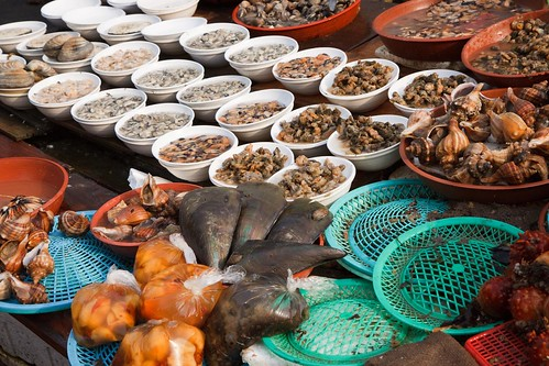 Jagalchi fish market (Busan)